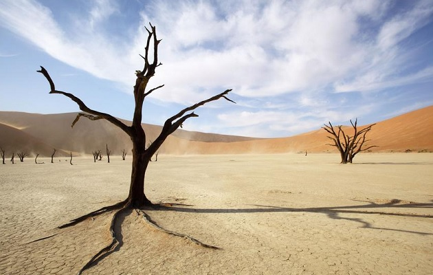 Namibia Photo Tours