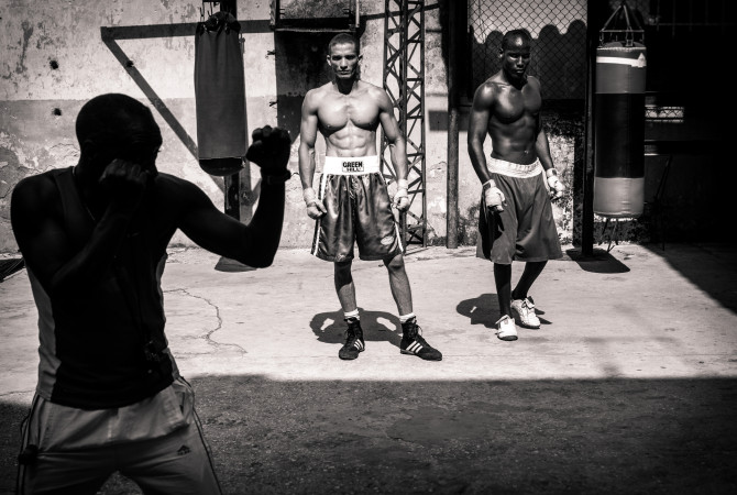 Cuban Boxers, Harry Fisch