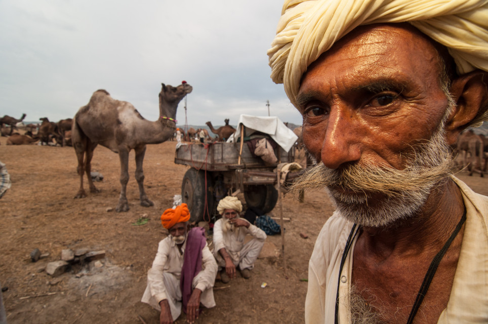 Pushkar Camel Fair Photo Tour
