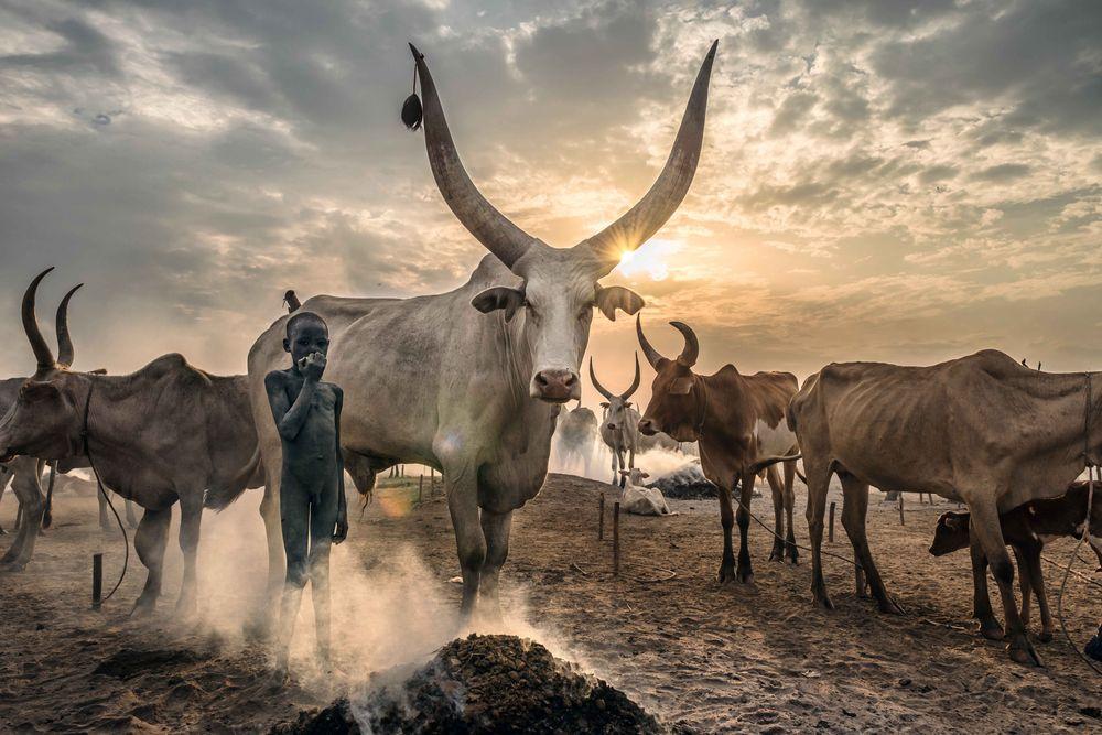 Sudan Photo Tour Pazzi